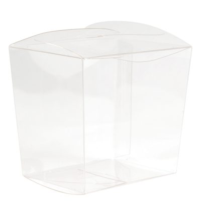 Clear Mini Noodle Box
